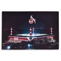 LED-Bild Stadion (1)