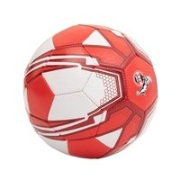 Miniball Rut-Wiess Gr. 1 (3)
