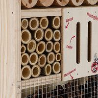 Insektenhotel (3)